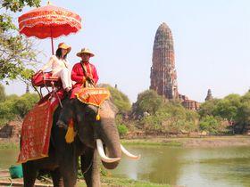 タイの象と一緒に!ワット・プラ・ラーム遺跡はインスタ映えスポット