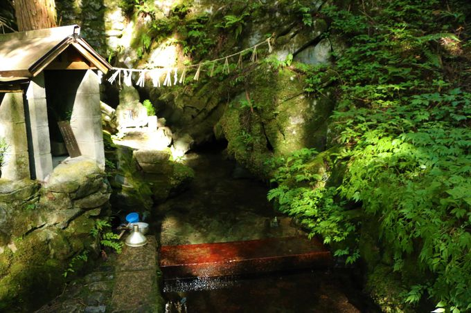洞川の名水!泉の森(名水百選)