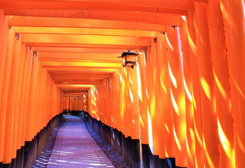 京都観光の専門家があなたに送る!おすすめスポット30選