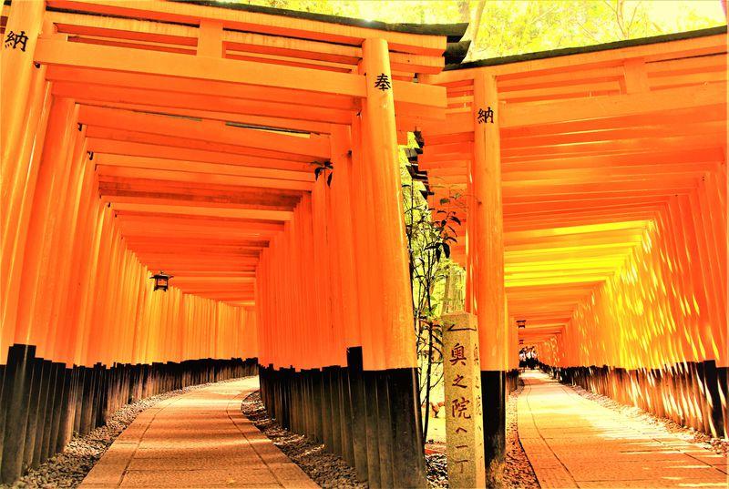 京都・伏見のおすすめ観光スポット10選!酒蔵も寺田屋も総まとめ