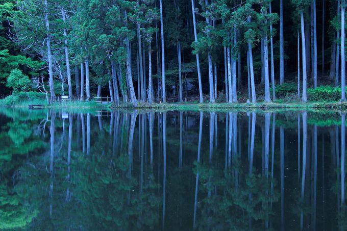 神秘的な鏡の池!「龍王ヶ渕」