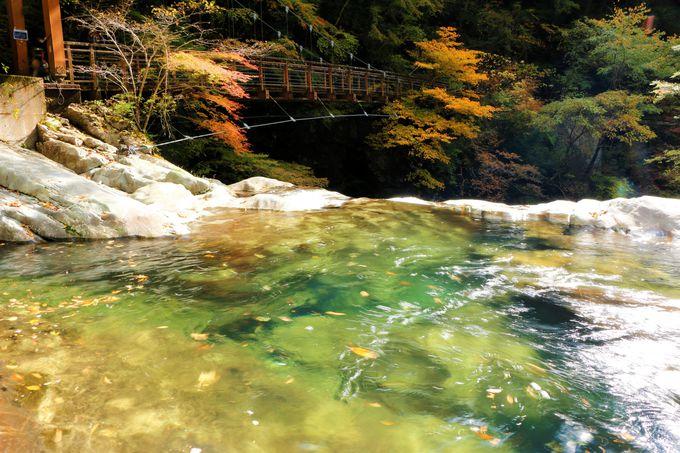 修験道発祥の大峯山(山上ヶ岳)