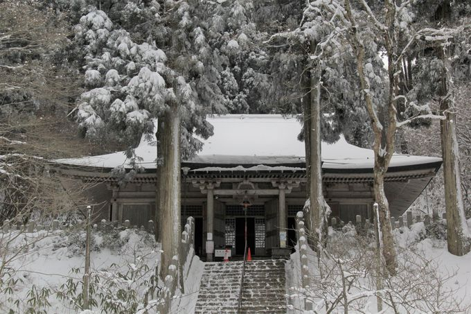「ツツジ尾谷」「タカハタ谷」登山コース