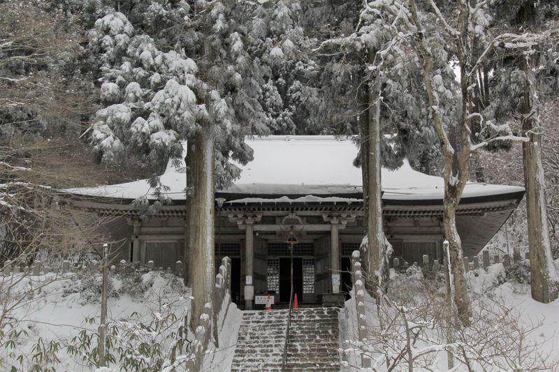 日帰り登山で人気!大阪「金剛山」おすすめの登山ルート5選