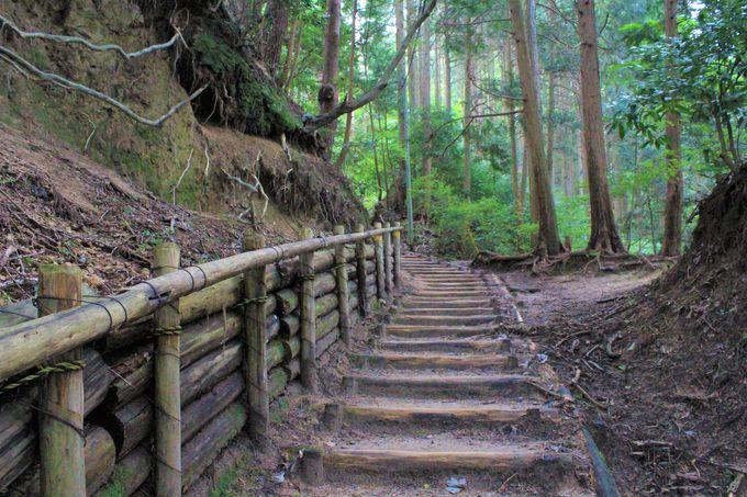 千早本道(千早城跡)登山コース