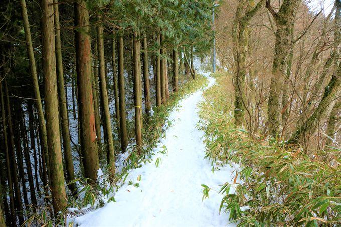 青崩道、もみじ谷の登山ルート