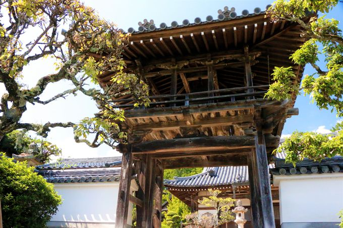 極楽寺から高天彦神社もおすすめ