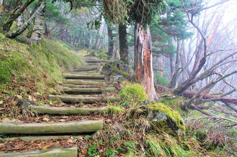 UFOが来る!奈良・天河神社の奥宮「弥山」はピラミッドパワー