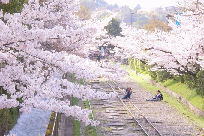 南禅寺/蹴上(けあげ)インクライン/哲学の道