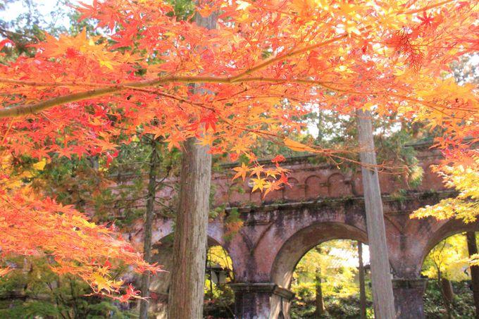 京都の片隅にたたずむインクライン跡地