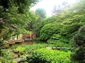 江戸時代より続く御殿山庭園が目の前「東京マリオットホテル」で癒される休日を