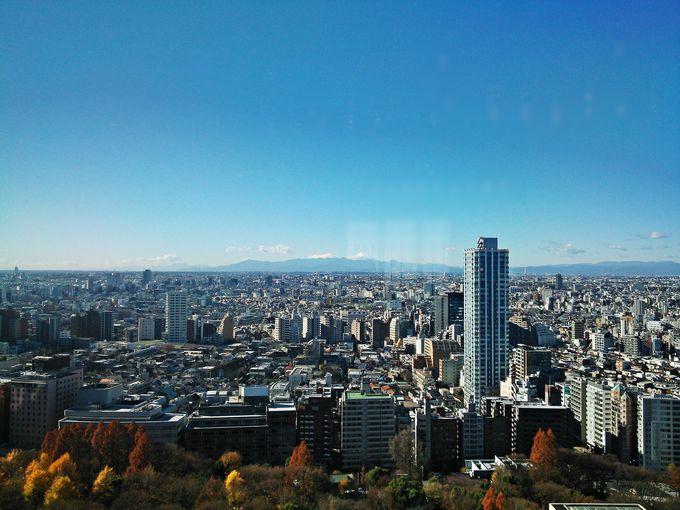富士山と公園の緑を楽しむ「ハイアットリージェンシー東京」