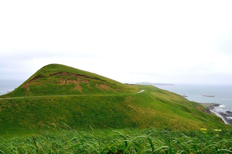 至高の贅沢!日本一のウニが食せる島「礼文島・利尻島」