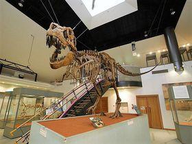 神流町恐竜センターは関東・群馬の恐竜王国!恐竜の足跡化石も!