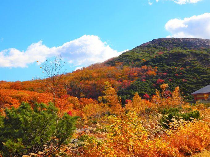 川湯温泉絶景紅葉トンネルの先には硫黄山の紅葉が。