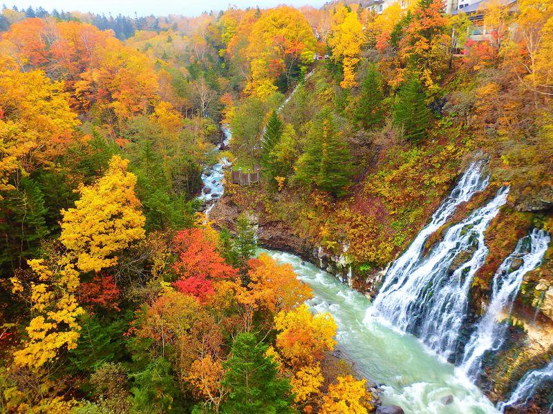 北海道で絶景紅葉狩り!見どころ満載おすすめスポット10選