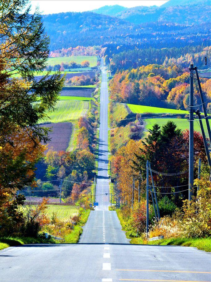 美瑛の紅葉#3 ジェットコースターの路と美馬牛小学校