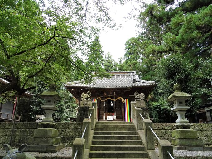 トトロ神社の胎内めぐりから星宮神社へ
