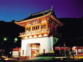 武雄温泉観光モデルコース!「竜宮城から憧れの図書館まで」
