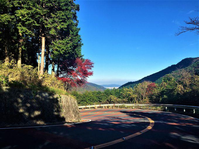 東海道一の難所!苦しくて、涙こぼれる激坂を乗り切れ!