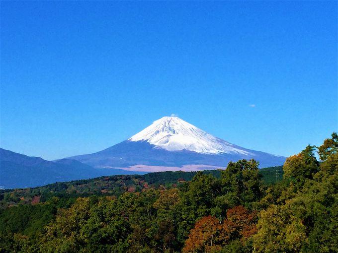 ごほうびは富士山の絶景や、新名所三島スカイウォーク