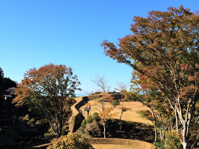 箱根峠を越えれば、あとは箱根西坂をひたすら下るだけ