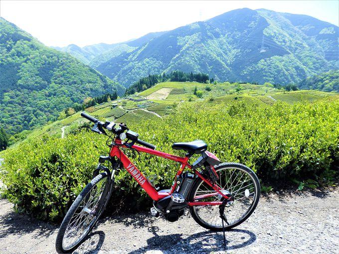 「岐阜のマチュピチュ 天空の茶畑」へは養鉄トレクルで