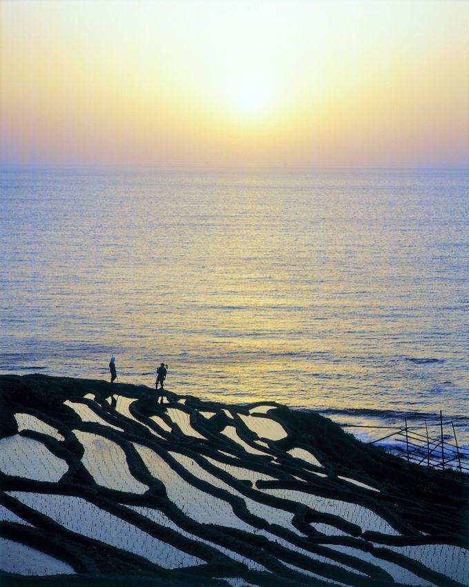 1日目午後:日本初の世界農業遺産「白米千枚田」の絶景へ