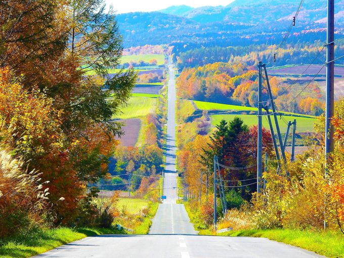 北海道絶景ドライブ#1 「ジェットコースターの路」
