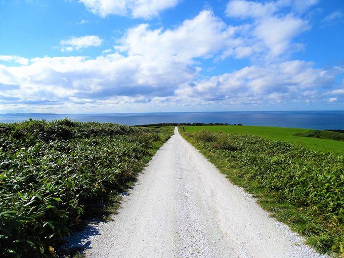 北海道絶景ドライブ#5 「宗谷の白い貝殻の道」