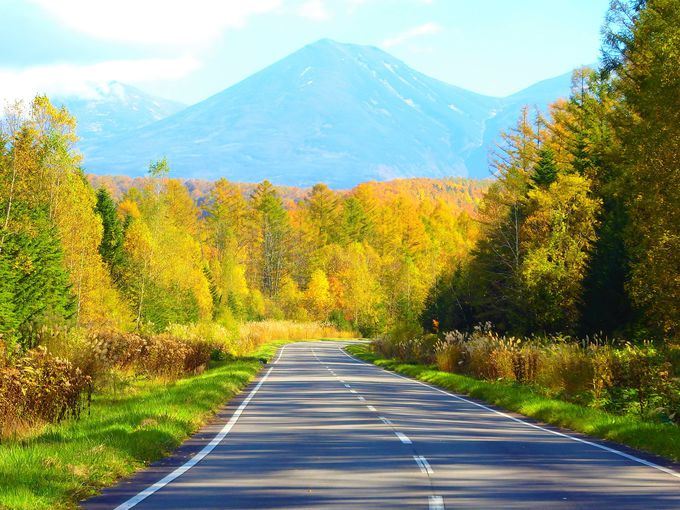 北海道絶景ドライブ#2 「日本で一番美しい道?」