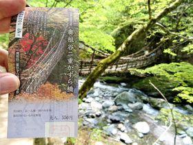 かずら橋は3つある?徳島・祖谷のかずら橋めぐり