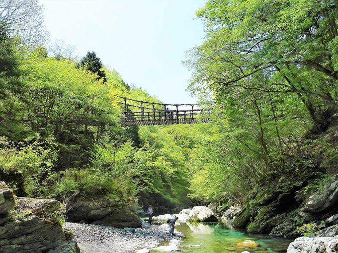 「奥祖谷二重かずら橋」は男橋、女橋、野猿の3つ