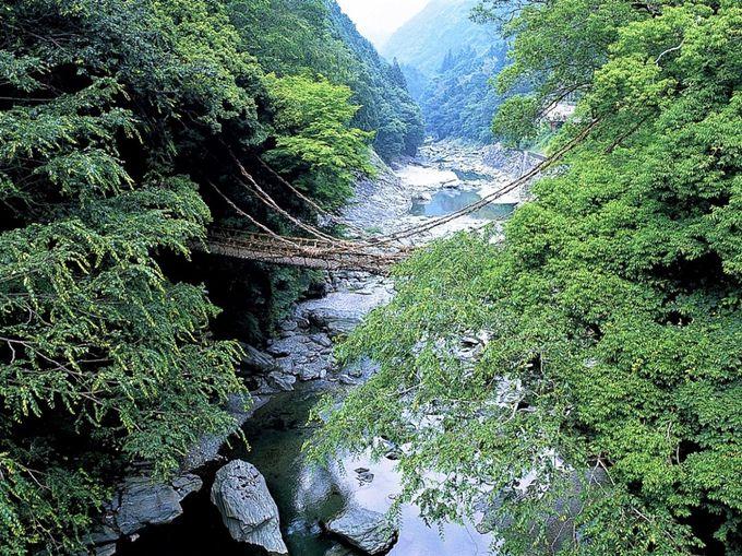 元祖?「祖谷のかずら橋」は日本三奇橋のひとつ