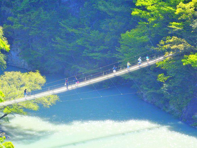 寸又峡プロムナードコースで「夢の吊り橋」「飛龍橋」めぐり