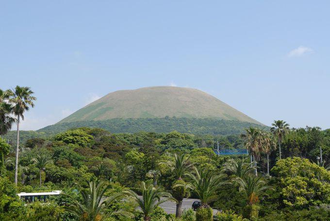 2日目午後:福江島から中通島へ。世界遺産をめぐるオプションも