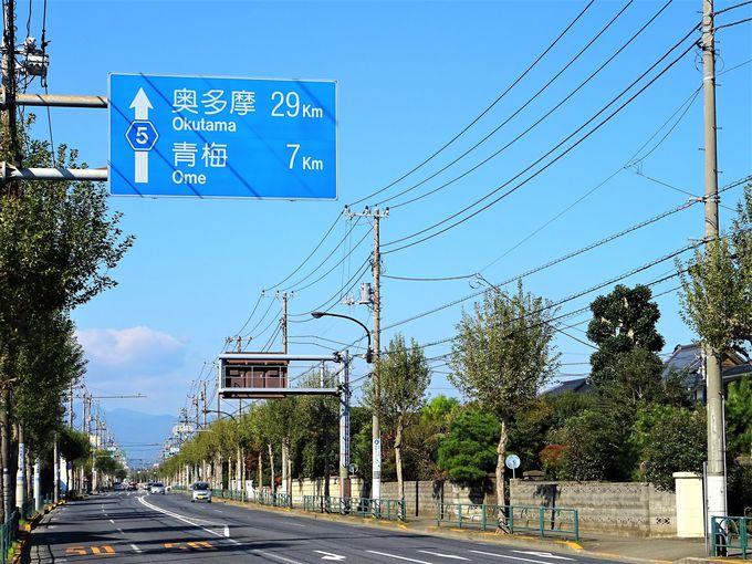 奥多摩の山々を望み、いよいよ青梅へ 箱根ヶ崎〜青梅