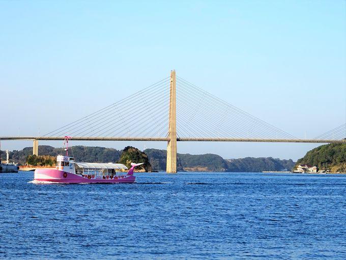 呼子観光モデルコース#2 イカの活造りランチは早めに!