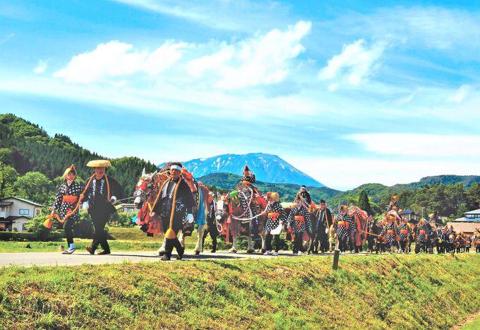 チャグチャグ馬コ見どころ#2 絶景の岩手山をバックに行進