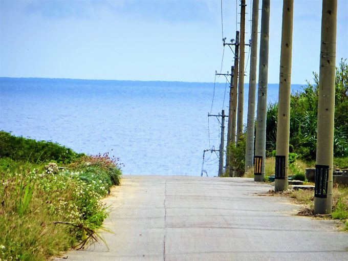 いよいよ波照間島観光!移動手段をゲットしてまずはニシ浜へ