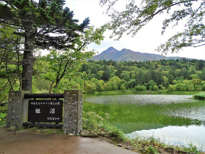 利尻島1周観光 朝:姫沼で逆さ利尻富士を拝めるか?