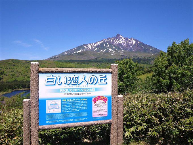 利尻島1周観光 午前:白い恋人の丘とオタトマリ沼へ
