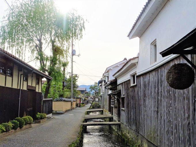 1日目午前〜午後:山陰観光スタートは日本一のスナバ県から