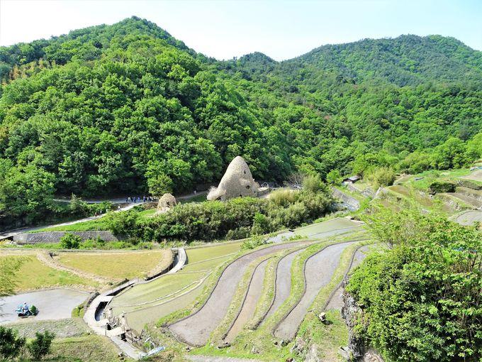 1日目:まずは一番大きな小豆島を1泊2日で