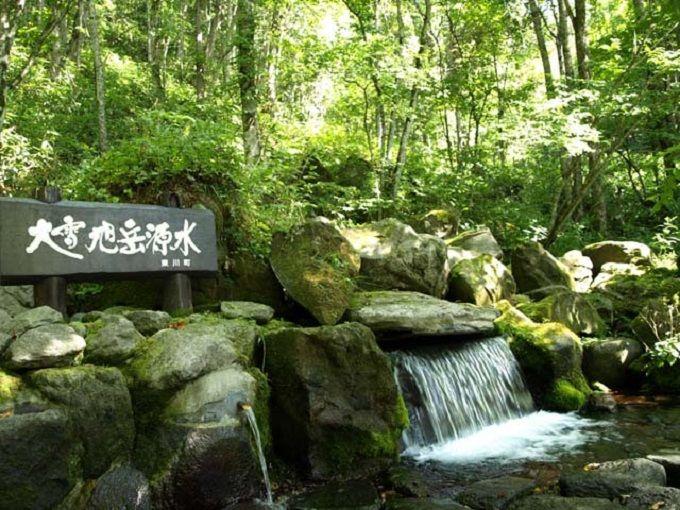 ここ本当に北海道の小さな町?東川のカフェやショップめぐり