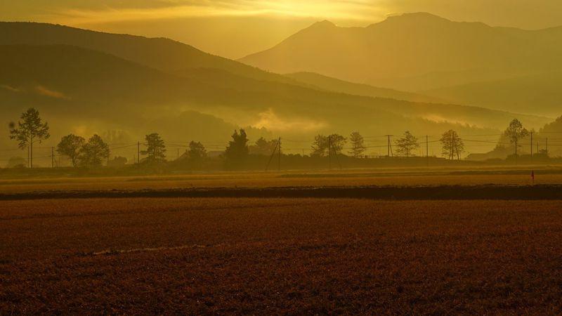 移住者や観光客が増え続ける理想郷、東川町の魅力