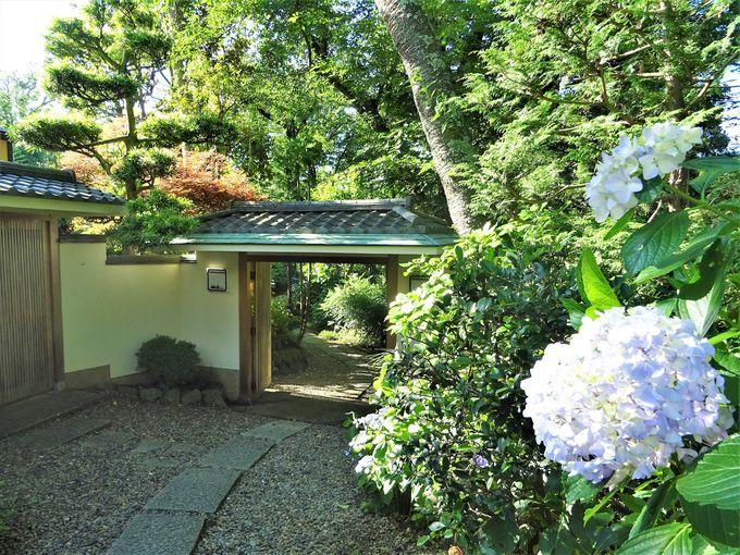 「裏鎌倉」と呼ばれる瀟洒な邸宅街「鎌倉山」をゆったり散策