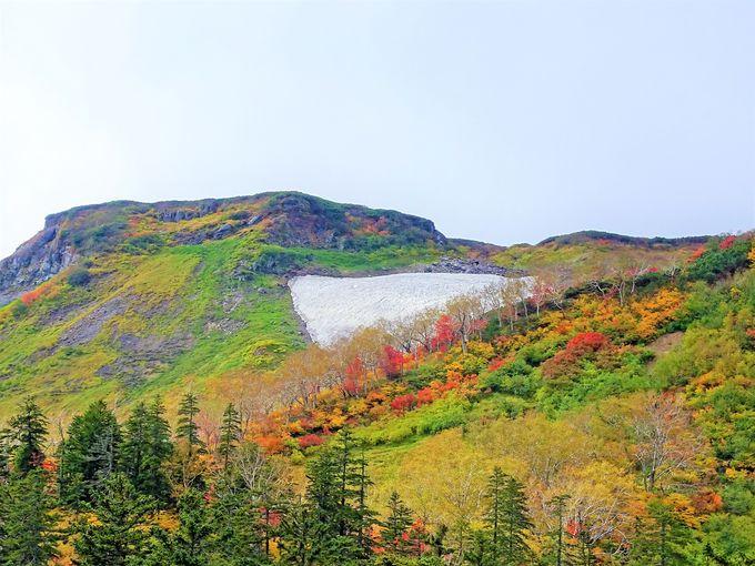 大雪山紅葉めぐりは層雲峡温泉をベースに