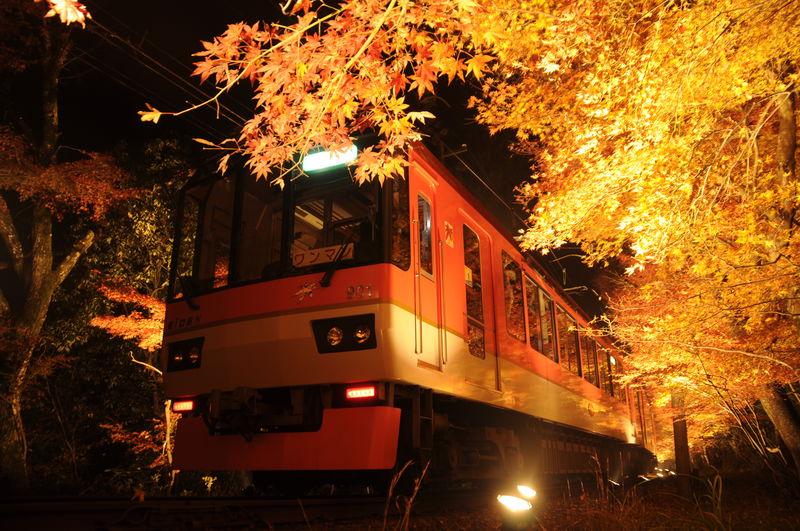 これは絶景!叡山電車「もみじのトンネル」で京都紅葉列車の旅