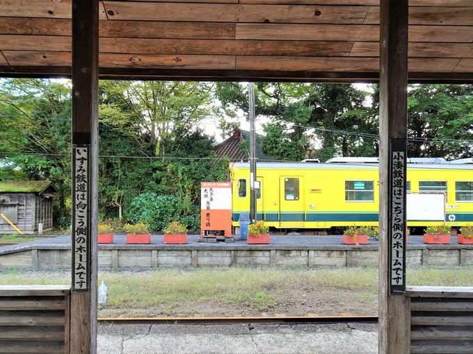 いすみ鉄道に乗り換え、房総半島縦断も楽しい!